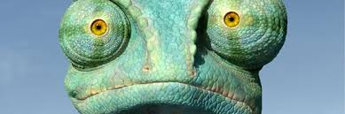 chameleon rango2